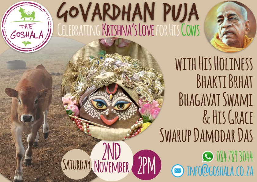 Govardhan Puja @The Goshala